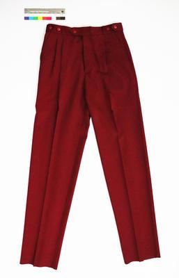 Great South Pacific Express - Pants (maroon)