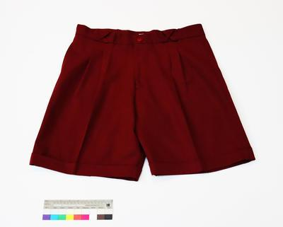 Great South Pacific Express - Shorts (maroon)