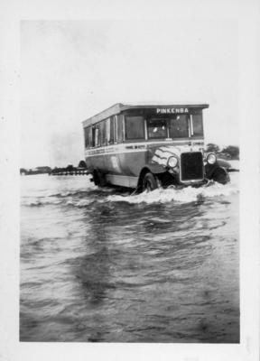 Photograph - Pinkenba Bus