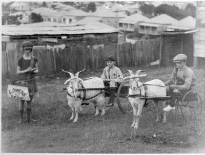 Photograph - Billy Goat Carts